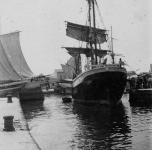 nave di poppa