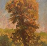 1924 Albero (olio su cartone cm 36x27,5)